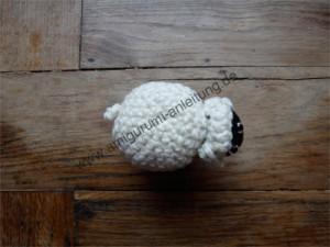 Draufsicht auf Amigurumi-Schaf Kilkenny
