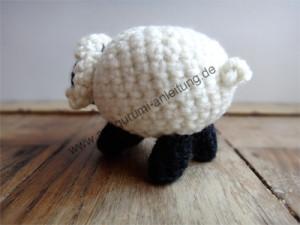 Das Amigurumi-Schaf Kilkenny von hinten